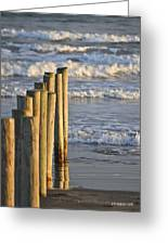 Fence Posts Into The Sea Greeting Card