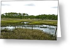 Fence Thru The Marsh Greeting Card
