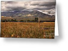 Fence View Greeting Card