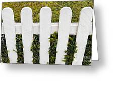 Fence With Hedge Greeting Card