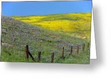 Fenced In Flowers Greeting Card