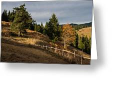 Fenced In Warm Autumn Light Greeting Card