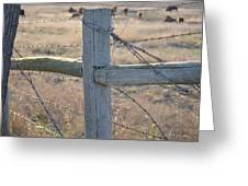 Fenced Greeting Card by Kelly Kitchens