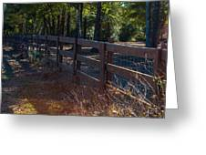 Fenceline 1 Greeting Card