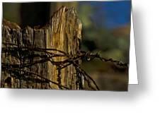 Fenceline 2 Greeting Card