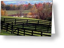 Fences In The Fall Greeting Card