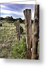 Fences Not Borders Greeting Card