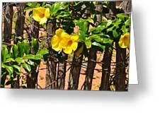 Fency Free Brazlian Flowers Greeting Card