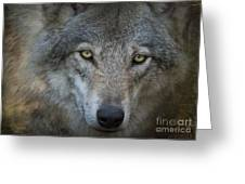 Fenris... Greeting Card