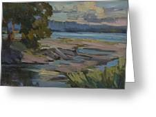 Fern Cove Vashon Island Greeting Card