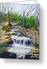 Ferndell Creek Noon  Greeting Card
