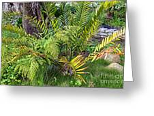 Ferns II Greeting Card