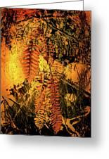 Ferns In Fall Greeting Card