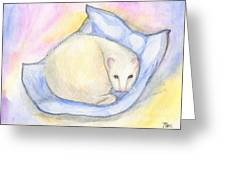 Ferret's Day Off Greeting Card