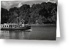 Ferry Greeting Card by Mario Celzner