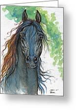 Ferryt Polish Black Arabian Horse Greeting Card