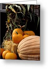 Festive Fall Greeting Card