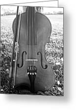 Fiddle And Bow Bw Greeting Card