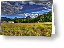 Field Bathed In Sunshine Greeting Card