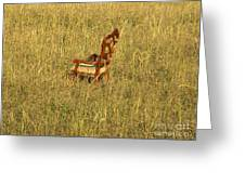 Field Of Chair Greeting Card