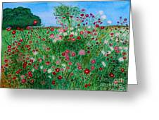 Field Of Cosmos Greeting Card