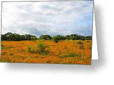 Field Ablaze Greeting Card
