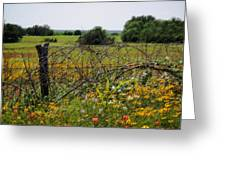 Field Of Flowers 3 Greeting Card