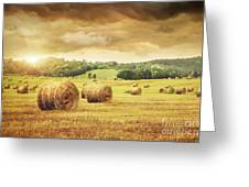 Field Of Freshly Bales Of Hay With Beautiful Sunset Greeting Card by Sandra Cunningham