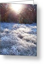 Field Of Frost Greeting Card