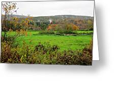 Field Of Green Greeting Card