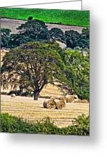 Field Of Hay Greeting Card