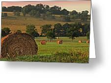 Field Of Hay Greeting Card