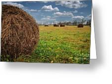 Field Of Haystacks Greeting Card
