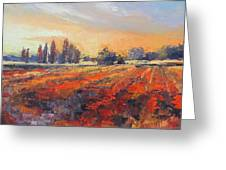 Field Of Light Oil Painting Greeting Card