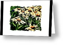 Field Of Love Greeting Card