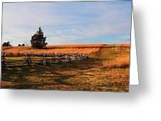 Field Of Shadows Greeting Card