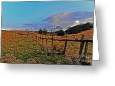Field Of The Cotswold Greeting Card