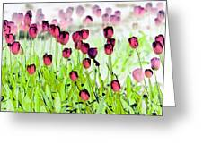 Field Of Tulips - Photopower 1492 Greeting Card