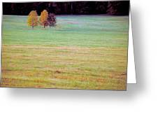 Field With Four Trees Greeting Card