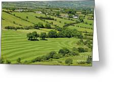 Fields In Northern Ireland Greeting Card
