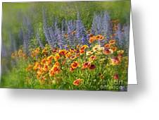 Fields Of Lavender And Orange Blanket Flowers Greeting Card