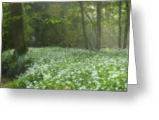 fields of Legend Greeting Card