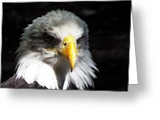 Fierce Pride Greeting Card