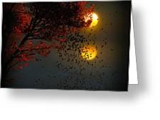 Fiery Fall... Greeting Card