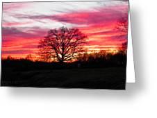 Fiery Oak 2 Greeting Card