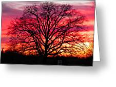 Fiery Oak Greeting Card