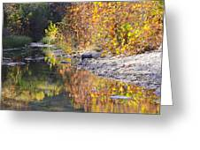 Fiery Reflection At Lost Maples Greeting Card