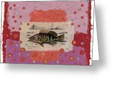 Fiesta Fish Collage Greeting Card