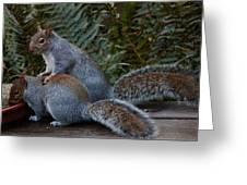 Need A Back Massage? Greeting Card