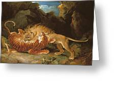Fight Between A Lion And A Tiger, 1797 Greeting Card by James Ward